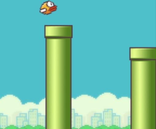jeux d oiseau
