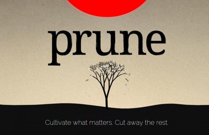 prune-1024x663